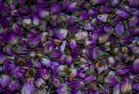 dry purple rose flowers from Arabian Peninsula