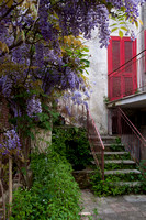 Courtyard in Italian village with lavander