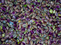 Nuts from the Arabian Peninsula pistachios shelled